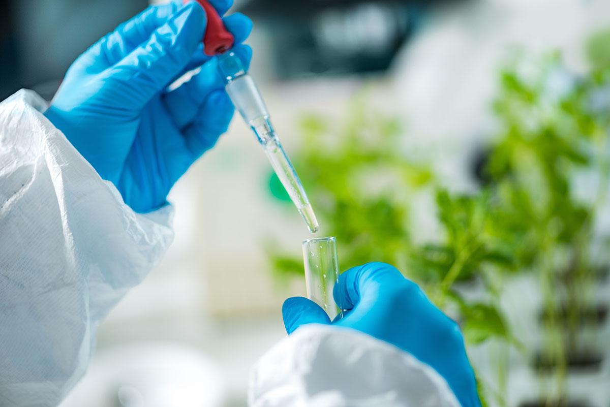 cbd lab test