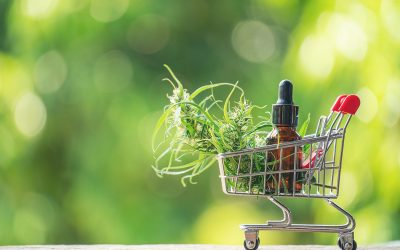 CBD Oil UK: How to Choose the Right Brand