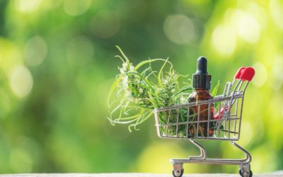 Common Mistakes CBD Oil Buyers Make (Infographic)