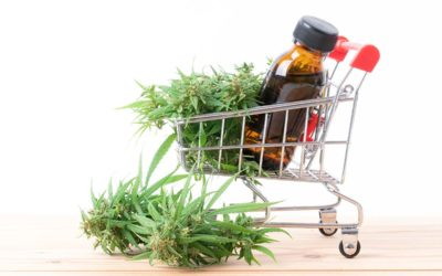 Red Flags to Look Out for When Buying CBD Oil (Infographic)